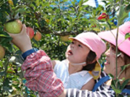 多田りんご園